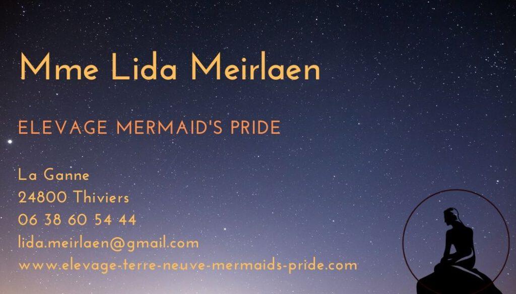 mermaids-pride-contact